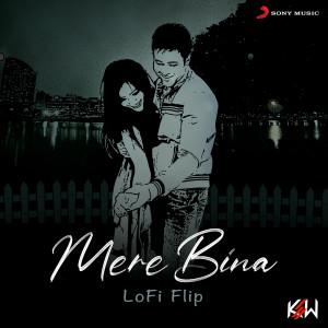 Album Mere Bina (Lofi Flip) from Pritam