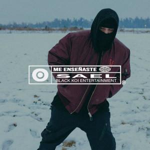 Album Me Enseñaste from Saël