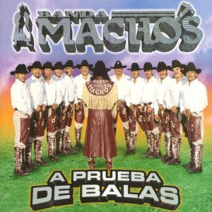 Album A prueba de balas from Banda Machos