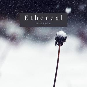 Album Ethereal from Blossom