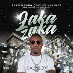 Album Zaka Zaka from Team Mosha