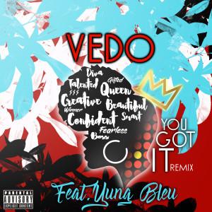 Album You Got It (Remix) (Explicit) from VEDO