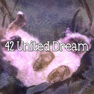 Sleep Sounds of Nature的專輯42 United Dream