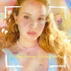 Wildflower Wildfire dari Lana Del Rey