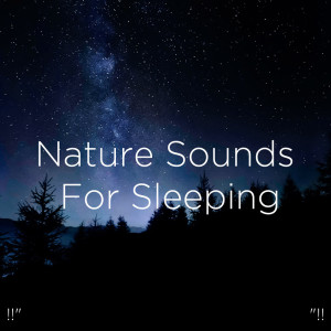 "Album !!"" Nature Sounds For Sleeping ""!! from BodyHI"