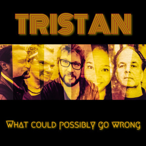 Album What Could Possibly Go Wrong from Tristan