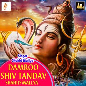Album Damroo Shiv Tandav-Shahid Mallya from Shahid Mallya