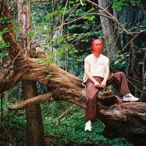 Album Honest from rei brown