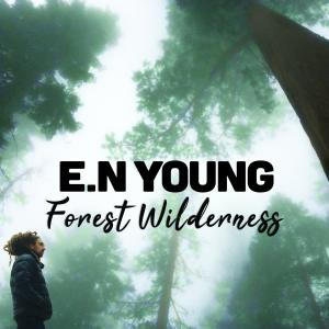 Album Forest Wilderness from E.N Young