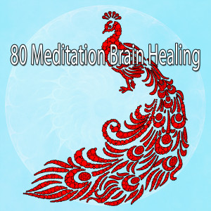 Album 80 Meditation Brain Healing from Deep Sleep Meditation