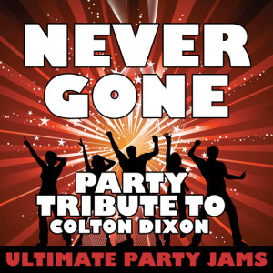 Ultimate Party Jams的專輯Never Gone (Party Tribute to Colton Dixon)