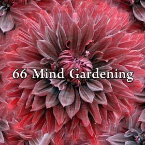 Monarch Baby Lullaby Institute的專輯66 Mind Gardening