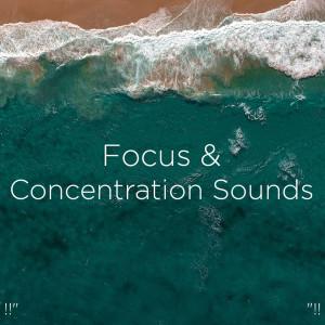 "Relajacion Del Mar的專輯!!"" Focus And Concentration Sounds ""!!"
