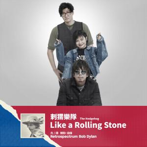 刺猬樂隊的專輯Like a Rolling Stone 像一塊滾石