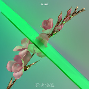 Listen to Never Be Like You (Teengirl Fantasy Remix) song with lyrics from Flume