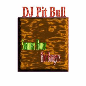 Album Summer House Hot Bangers from DJ Pit Bull