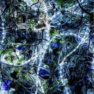 Aimer的專輯Ninelie - EP