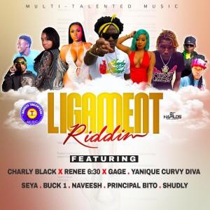 收聽Charly Black的Ligament (Radio Edit)歌詞歌曲