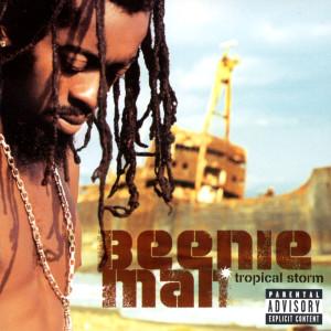 Tropical Storm 2002 Beenie Man