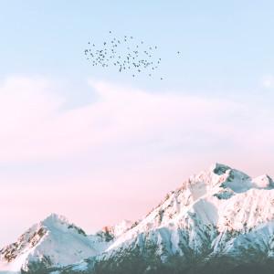 Slaapmuziek的專輯Relaxing Piano Music with Bird Sounds