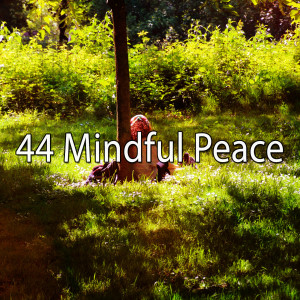 Yoga Workout Music的專輯44 Mindful Peace