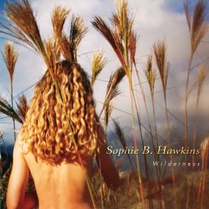 Album Wilderness from Sophie B. Hawkins