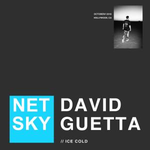Ice Cold 2018 Netsky; David Guetta