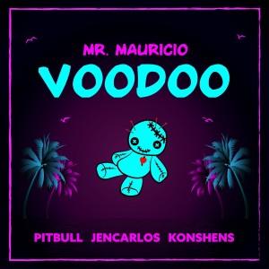 Pitbull的專輯Voodoo