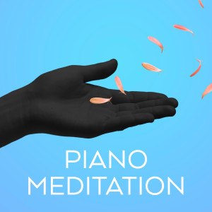 Album Piano Meditation - Debussy, Ravel, Satie from Erik Satie