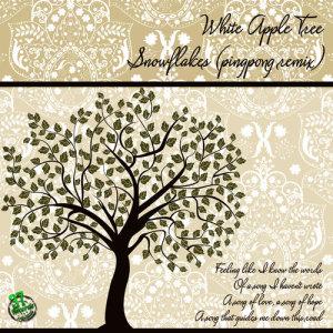 Album Snowflakes (Pingpong Remix) from Pingpong