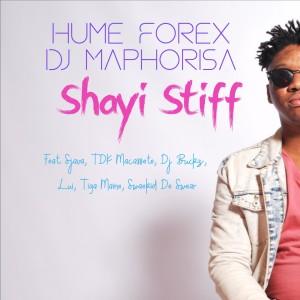 Album Shayi Stiff from TDK Macassete