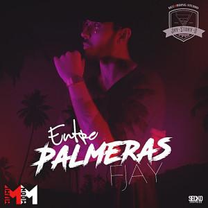 Album Entre Palmeras from F Jay