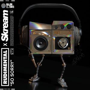 Album So Sorry from Rudimental