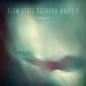 Album Flow State Desnuda Waltz 2 from Danny Mulhern