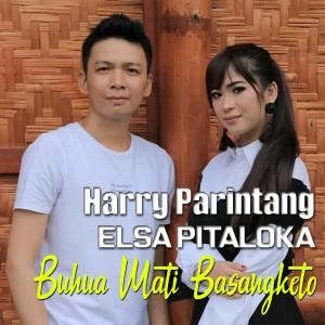 Harry Parintang & Elsa Pitaloka - Buhua Mati Basangketo