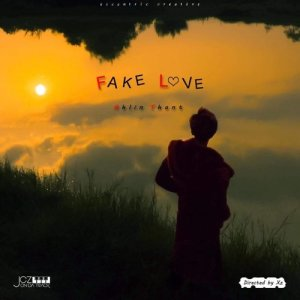 Album Fake Love (Prod. By JCZ) from Ahlin Thant