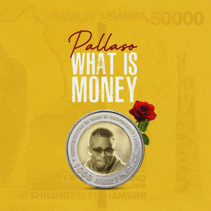 Album What Is Money from Pallaso