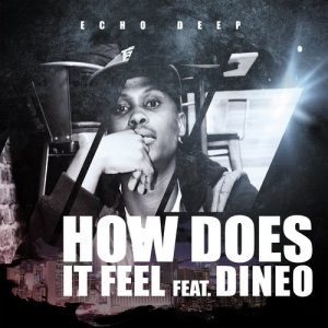 Album How Does It Feel from Dineo