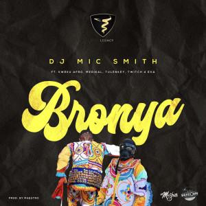 Bronya (Christmas)
