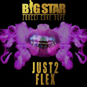 Album Just 2 Flex from Big Star