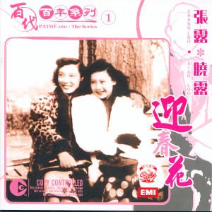 百代百年系列 1 迎春花 2005 張露; Xiao Lu