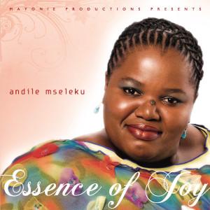 The Essence Of Joy 2008 Andile Mseleku
