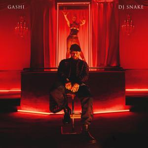 Album Safety (feat. DJ Snake) from GASHI