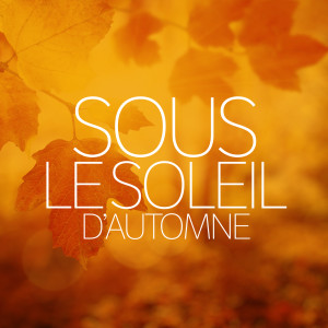 Listen to Mais je t'aime song with lyrics from Grand Corps Malade