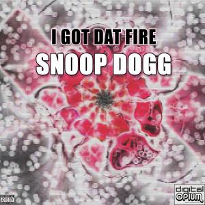 Album I Got Dat Fire from Snoop Dogg