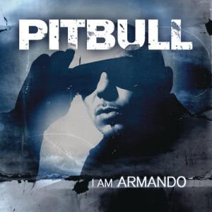 收聽Pitbull的Echa Pa'lla (Manos Pa'rriba)歌詞歌曲