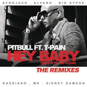 收聽Pitbull的Hey Baby (Drop It to the Floor) (Big Syphe Remix)歌詞歌曲