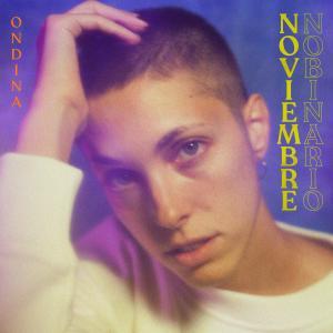 Album Noviembre No Binario from Ondina