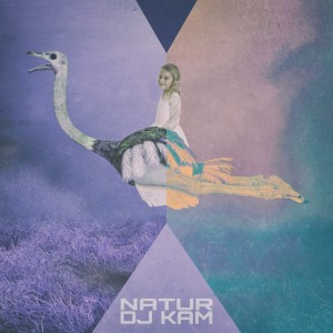 Album Natur - EP from DJ Kam
