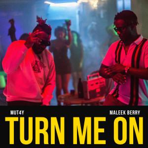 Album Turn Me On from Maleek Berry